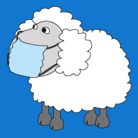 Sick Sheep