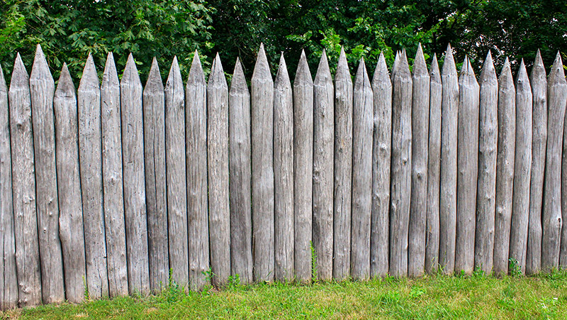 beyond the pale old fence